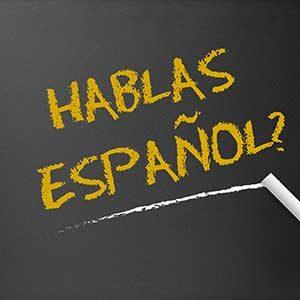Online Spanish 2